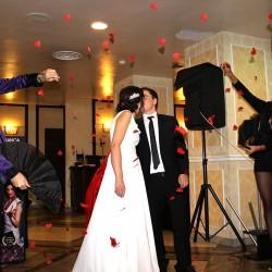 magician nunta by eduard si bianca (15)